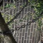 oak-grove-hs-00153