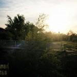 oak-grove-hs-00283