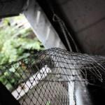 faycityhos-schwarz_00051